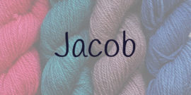 Category Title - Jacob